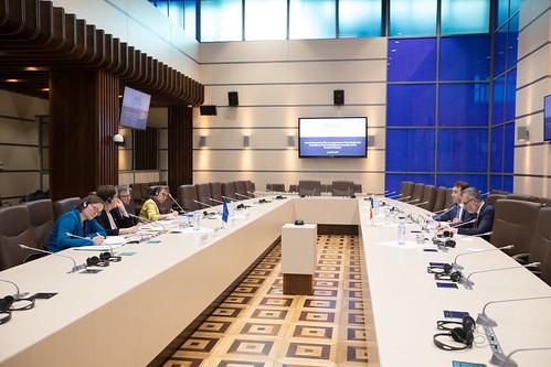 Întrevedere fracțiunea PLDM cu coraportorii Comisiei de Monitorizare a APCE