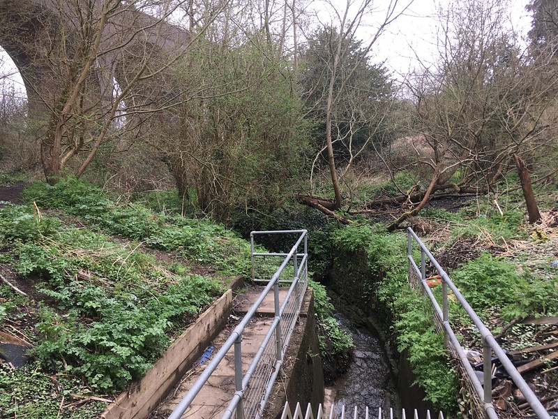 Where Coombe Brook disappears underground for the last time
