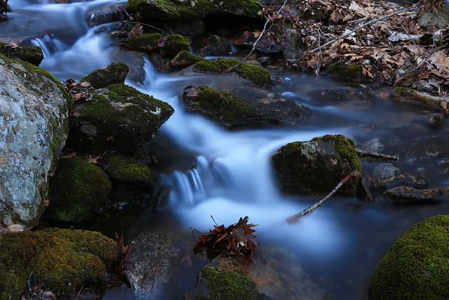 Moss and Water, Canon EOS REBEL T6I, Canon EF-S 18-55mm f/3.5-5.6 IS II