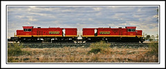 Trains & Trams in Australia