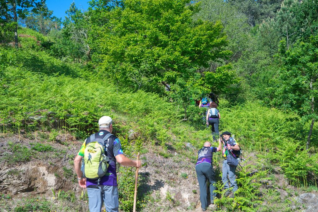 16.- Rota do Monte Aloia (125)