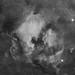 NGC7000 20p HA Mosaic