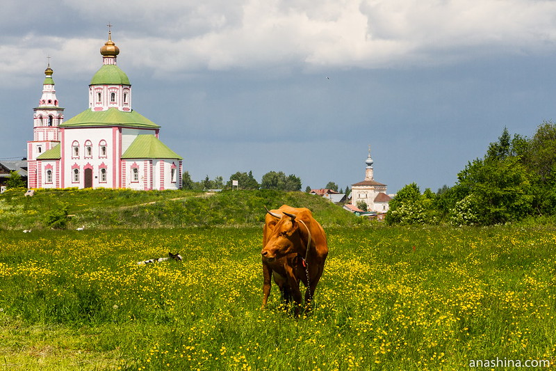 Ильинская и Тихвинская церкви, Суздаль