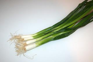 12 - Zutat Frühlingszwiebeln / Ingredient scallions