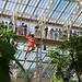 A day at Kew