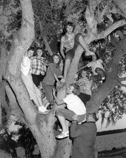 Teens from a Panama City girls' club climbing a tree during tour of deer hunt at Eglin Field.