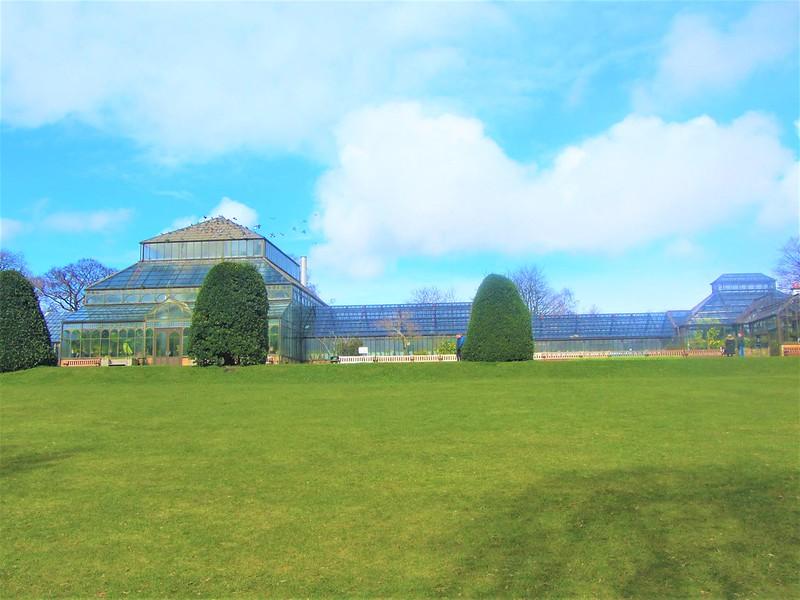 glasgow-ecosse-botanic-gardens-kibble-palace-thecityandbeauty.wordpress.com-blog-voyage-IMG_0082 (3)