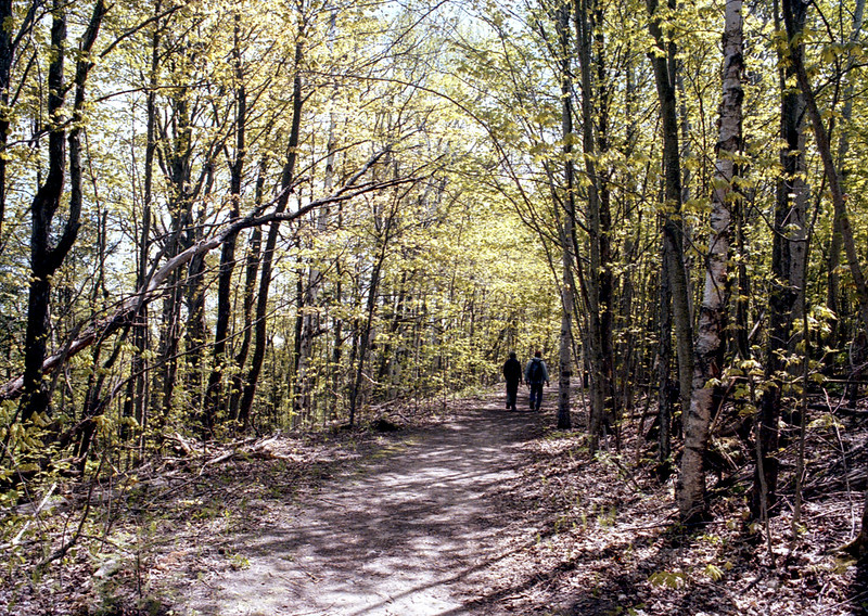 Hiking Inside Mono Cliffs Provincial Park