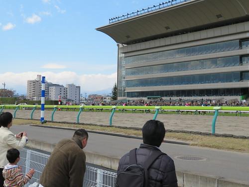 福島競馬場の障害レース最後の直線