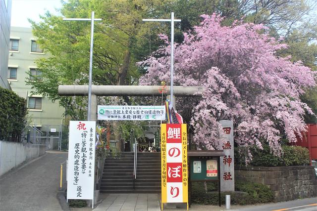 tanashijinja-gosyuin03038