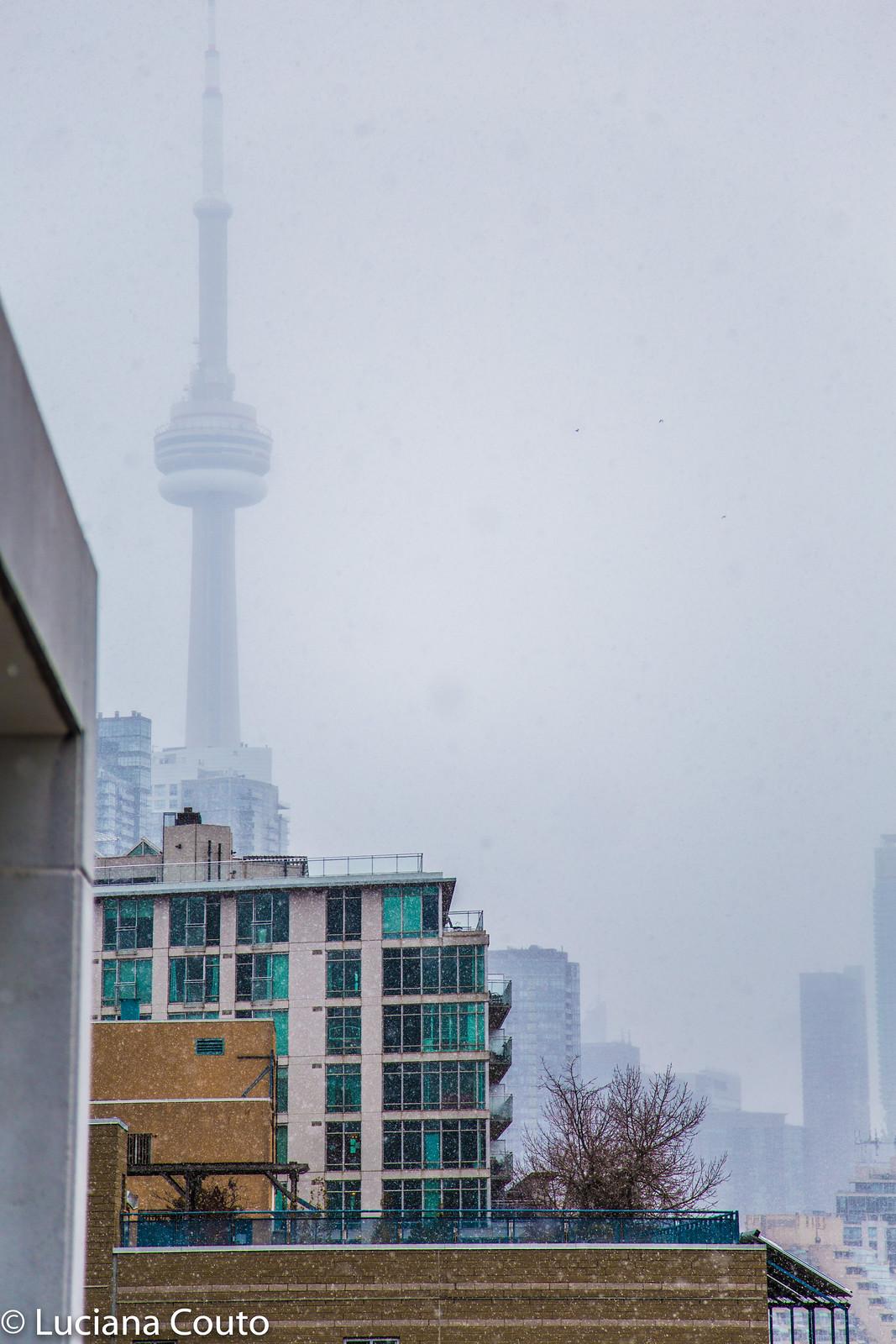 Neve de Primavera em Toronto