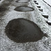 Puddles in the snow2