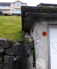 Rain, corners, moss on concrete roof, old garage, stone wall,  rusted vents, view house, Dash Point, Washington, USA