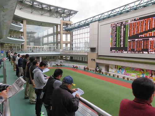 福島競馬場の3階バルコニー
