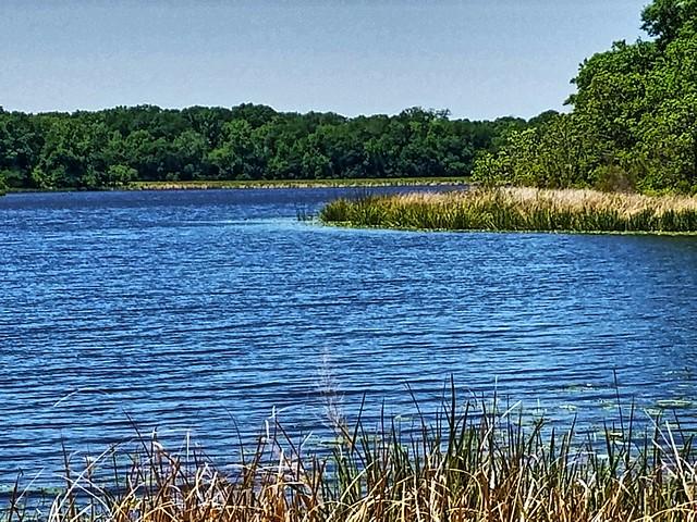 Bellwood Lake- Smith County TX (1)