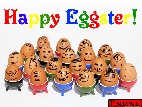 Happy Eggster!
