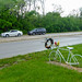 Ghost Bike - 135th and Ridgeland, Palos Heights, Illinois