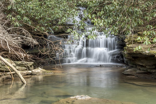 Unnamed falls, Bridge Creek, Chimneys SNA, Marion County, Tennessee