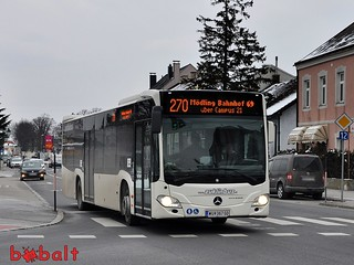 zuklinbus_wu367gd_01