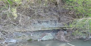 Hardins Creek