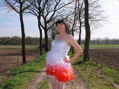 Dress and bodice