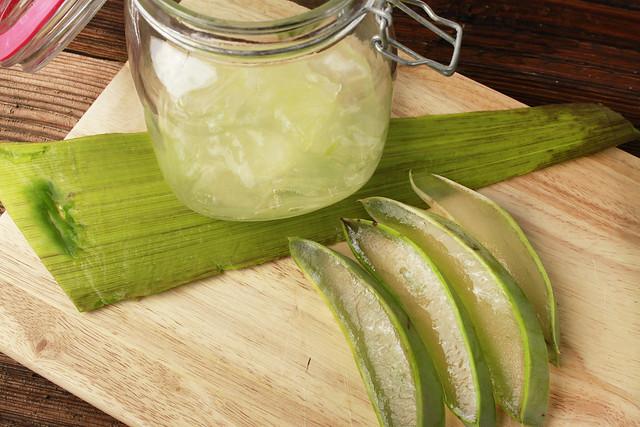 Storing-Aloe