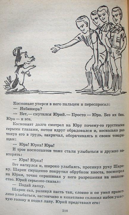 ChernyjSvet28