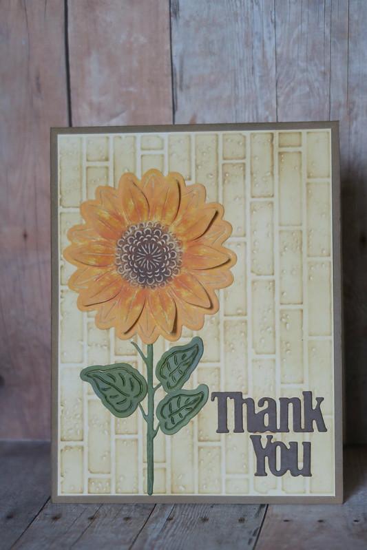 Sunflower Thank You - County Fair Entry