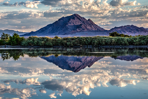Frenchman Mountain Morning Reflection