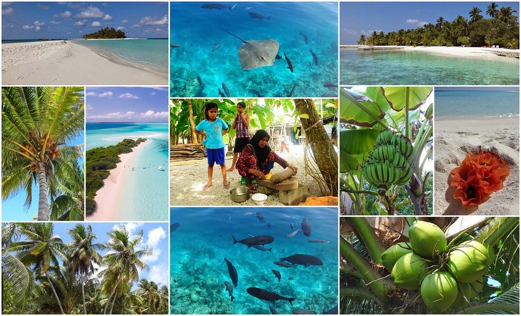 Malediwy lokalnie
