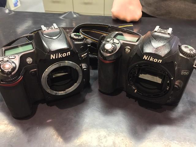 Nikon D50 & D80