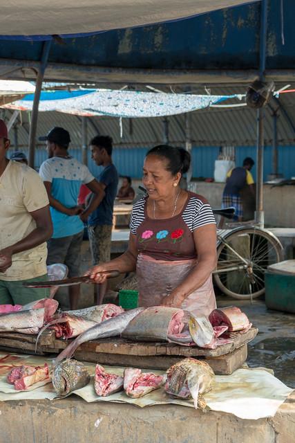 Fischmarkt Negombo