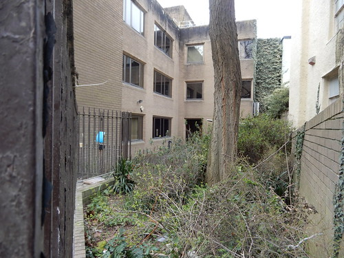 the condemned building's yard