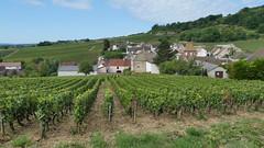 Santenay-le-Haut