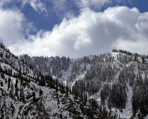 4cornersphoto bridgertetonnationalforest clouds cold color forest landscape lincolncounty mountains nature northamerica outdoor rockymountains rural scenery sky snakeriver snakerivercanyon snow spring thewyomings tree unitedstates weather woods wyoming wyomingrange alpine us