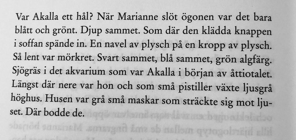 Caroline Ringskog Ferrada-Noli - Rich boy
