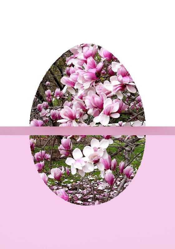 Magnolia Egg