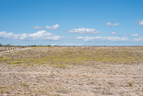Dry field on the A-5/E-90 motorway, Valmojado