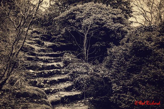 Stairway Johnston Gardens Aberdeen
