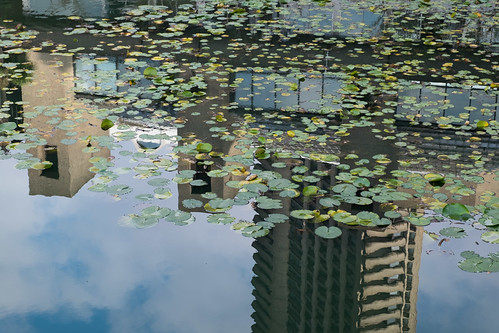 Barbican reflections