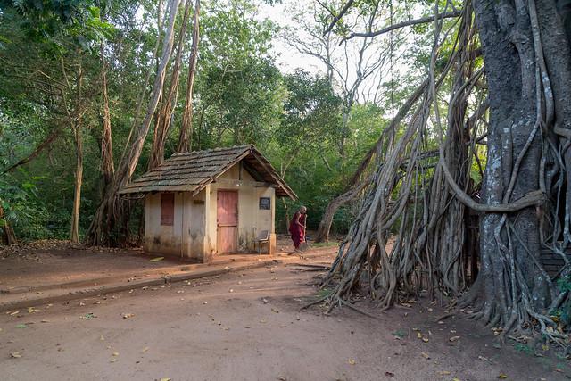 Mihindu Aranya Senasanaya