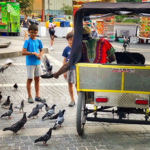 Kids and Pigeons, Central Park