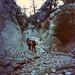 San Gorgonio Search - July 1991
