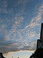 Handprints at sunset...