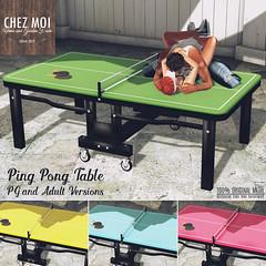 Ping Pong Table CHEZ MOI