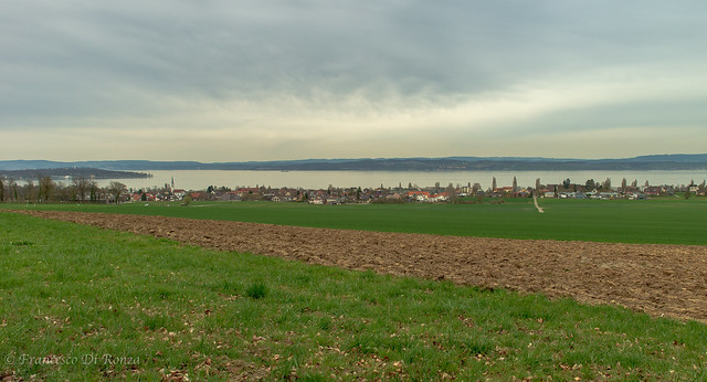 view of Lake Constance 2.)-2780