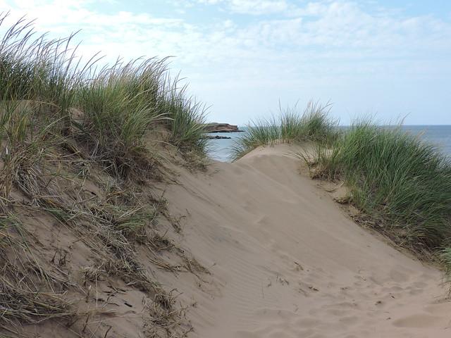 Dunes; rocks in distance