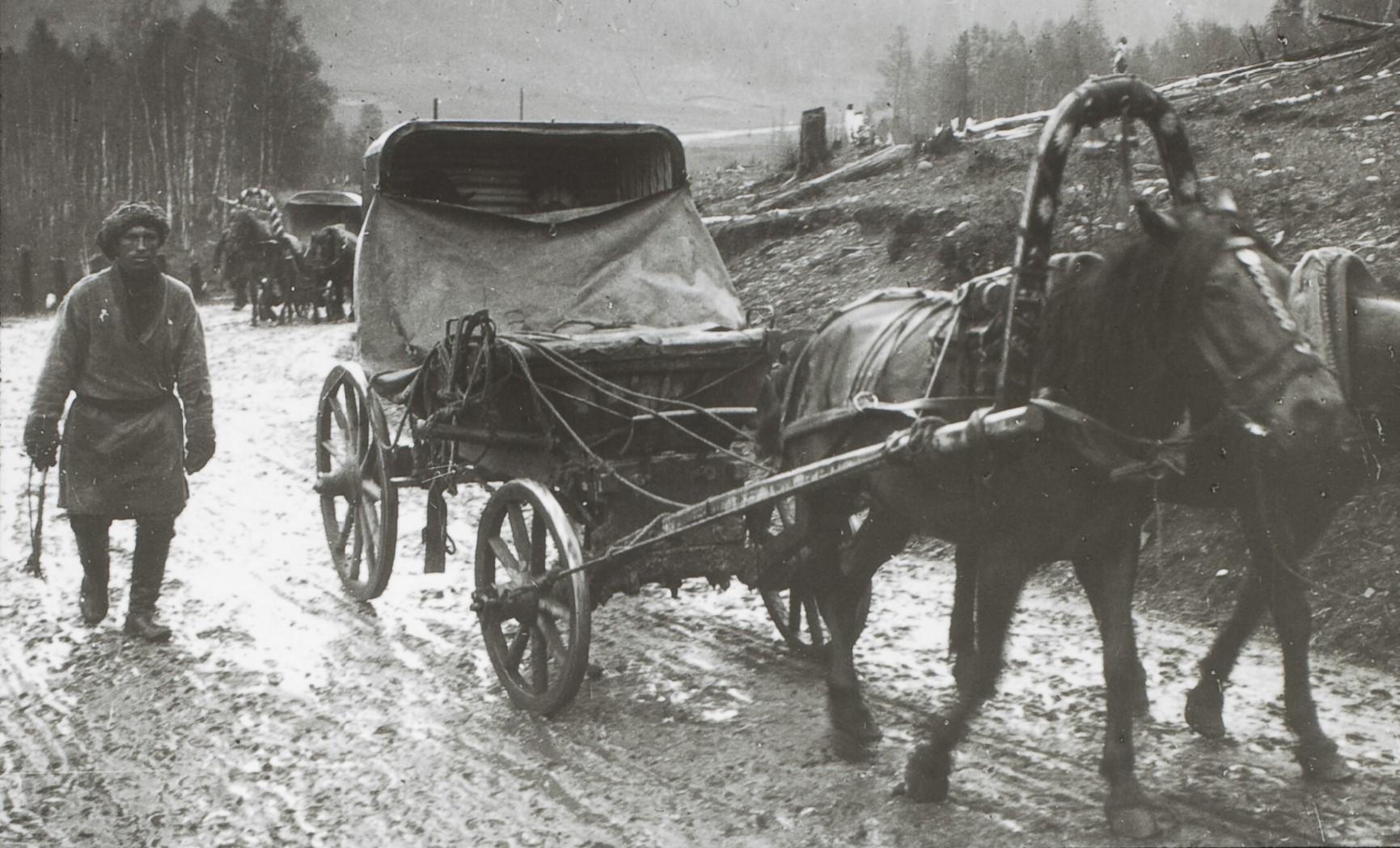 Якутская область. Лесная дорога в Якутских горах. Тарантас.