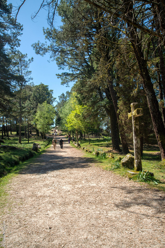 36.- Rota do Monte Aloia (294)