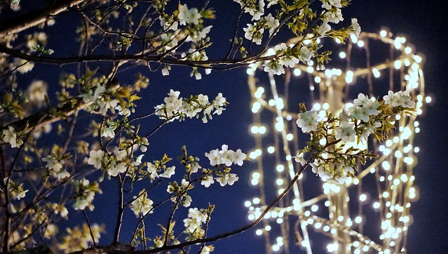 DSC07733-01みなとみらい夜景散歩